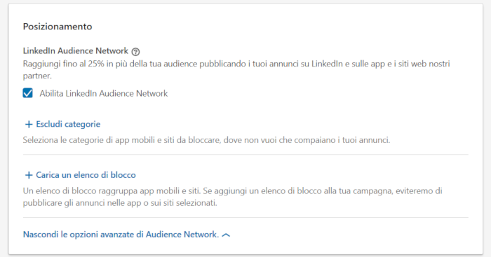 Opzione LinkedIn Audience Network